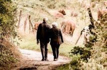 Come e quando andare in pensione in anticipo con la RITA