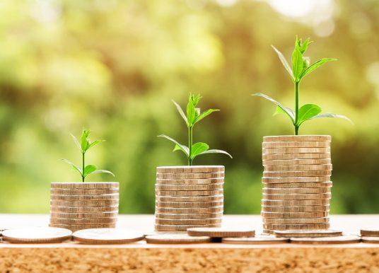 Bonus tredicesima pensioni 2020: importo aggiuntivo di 154,94 euro
