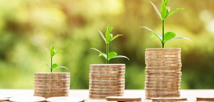 Prestiti 25000 euro garanzia Stato forfettari